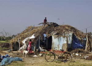 An Indian couple repair their home at the cyclone affected Haripur village in Ganjam district, Orissa state, India, Monday, Oct. 14, 2013. A mass government evacuation of nearly 1 million people spared India the widespread deaths many had feared from the powerful weekend cyclone Phailin, which destroyed hundreds of millions of dollars' worth of crops and tens of thousands of homes. (AP Photo/Biswaranjan Rout)