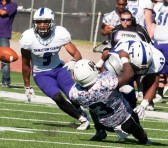 Photo courtesy of tarletonsports.com